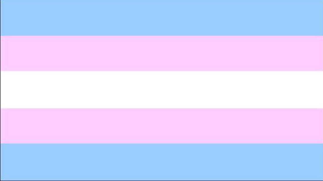 Evropski parlament poziva k upoštevanju človekovih pravic transspolnih oseb