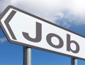 Razpis za delovno mesto – programska_i sodelavka_ec na programu mladine